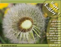 Happy Birthday! Psalm 91,4 er wird dich mit seinen Fittichen decken, und unter seinen Flügeln wirst du dich bergen; seine Treue ist Schirm und Schild.