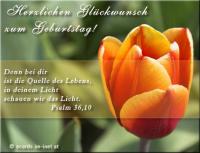 Herzlichen Glückwunsch zum Geburtstag! Psalm 36,10 Denn bei dir ist die Quelle des Lebens, in deinem Licht schauen wir das Licht.