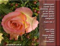 Alles Liebe und Gute und Gottes Segen in deinem neuen Lebensjahr! Psalm 106,1 Hallelujah! Dankt dem HERRN, denn er ist gütig, denn seine Gnade währt ewiglich!