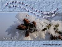 Ich wünsche dir von Herzen Gottes Segen und viel Freude im neuen Lebensjahr! Johannes 8,12 Jesus: Ich bin das Licht der Welt. Wer mir nachfolgt, wird nicht in der Finsternis wandeln, sondern er wird das Licht des Lebens haben.