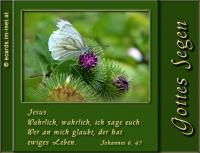 Gottes Segen! Johannes 6,47 Wahrlich, wahrlich, ich sage euch: Wer an mich glaubt, der hat ewiges Leben.