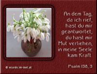 Psalm 138,3 An dem Tag, da ich rief, hast du mir geantwortet; du hast mir Mut verliehen, in meine Seele kam Kraft.