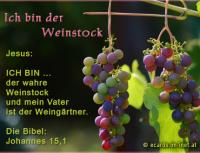 Jesus spricht: Ich bin ...