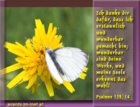 Psalm 139,14 Ich danke dir dafür, dass ich erstaunlich und wunderbar gemacht bin; wunderbar sind deine Werke, und meine Seele erkennt das wohl!