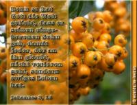 Johannes 3,16 Denn so [sehr] hat Gott die Welt geliebt, dass er seinen eingeborenen Sohn gab, damit jeder, der an ihn glaubt, nicht verlorengeht, sondern ewiges Leben hat.