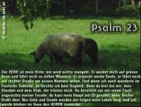 Psalm 23 Ein Psalm Davids. Der HERR ist mein Hirte; mir wird nichts mangeln. Er weidet mich auf grünen Auen und führt mich zu stillen Wassern. ...
