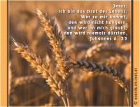 Johannes 6,35 Jesus aber sprach zu ihnen: Ich bin das Brot des Lebens. Wer zu mir kommt, den wird nicht hungern, und wer an mich glaubt, den wird niemals dürsten.