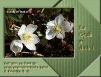 Ein Gruß an dich! 2. Korinther 9, 15 Gott aber sei Dank für seine unaussprechliche Gabe!