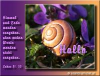 Hallo Lukas 21, 33 Himmel und Erde werden vergehen, aber meine Worte werden nicht vergehen.