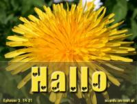 Hallo Epheser 3, 17 Dass der Christus durch den Glauben in euren Herzen wohne.