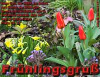 Frühlingsgruß Psalm 84,12 Denn Gott, der HERR, ist Sonne und Schild; der HERR gibt Gnade und Herrlichkeit, wer in Lauterkeit wandelt, dem versagt er nichts Gutes.