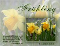 Frühling 2. Korinther 5, 17 Ist jemand in Christus, so ist er eine neue Schöpfung; das Alte ist vergangen; siehe, es ist alles neu geworden!