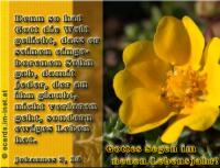 Gottes Segen im neuen Lebensjahr! Johannes 3,16 Denn so [sehr] hat Gott die Welt geliebt, dass er seinen eingeborenen Sohn gab, damit jeder, der an ihn glaubt, nicht verlorengeht, sondern ewiges Leben hat.