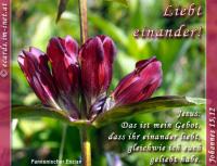 Liebet einander! Johannes 15,12 Jesus: Das ist mein Gebot, dass ihr einander liebt, gleichwie ich euch geliebt habe.