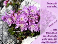 Psalm 34,9 Schmeckt und seht, wie freundlich der HERR ist; wohl dem, der auf ihn traut!