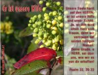 Psalm 33,20-22 Unsere Seele harrt auf den HERRN; er ist unsere Hilfe und unser Schild. Ja, an ihm wird unser Herz sich freuen, denn wir vertrauen auf seinen heiligen Namen. Deine Gnade, o HERR, sei über uns, wie wir es von dir erhoffen!