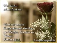 Herzliche Anteilnahme Psalm 46,2 Gott ist unsere Zuflucht und Stärke, ein Helfer, bewährt in Nöten.