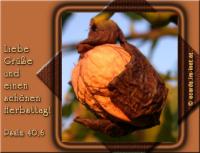 Liebe Grüße und einen schönen Herbsttag! Psalm 40,6 HERR, mein Gott, zahlreich sind die Wunder, die du getan hast, und deine Pläne, die du für uns gemacht hast; dir ist nichts gleich! Wollte ich sie verkündigen und davon reden - es sind zu viele, um sie aufzuzählen.