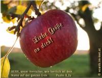 Liebe Grüße an dich! Psalm 8,2a Herr, unser Herrscher, wie herrlich ist dein Name auf der ganzen Erde.