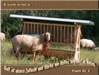 Psalm 46,2 Gott ist unsere Zuflucht und Stärke, ein Helfer, bewährt in Nöten.