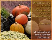 Psalm 118,24  Dies ist der Tag, den der HERR gemacht hat; wir wollen uns freuen und fröhlich sein in ihm! Ich wünsche dir einen schönen Herbsttag!