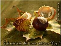 Ich wünsche dir einen schönen Tag ! Hebräer 13,8  Jesus Christus ist derselbe gestern und heute und auch in Ewigkeit!